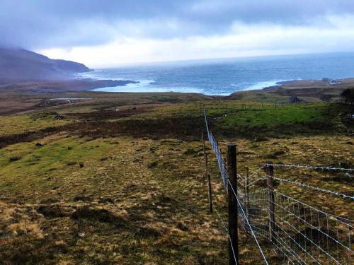 Stock fence with Electric fence