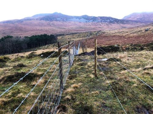 Stock fencing on Rum for SNH